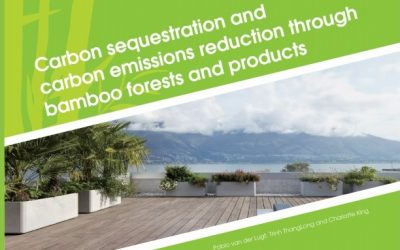 INBAR: Carbon Sequestration and Carbon Emissions Reduction Through Bamboo Forests and Products