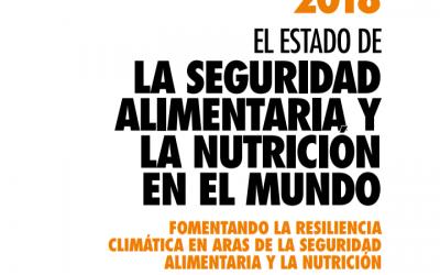 Informe sobre la seguridad alimentaria y la nutrición en el mundo